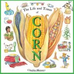 Life and times of corn