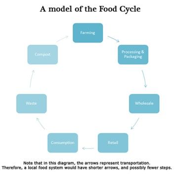 blog-food_cycle