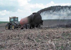 Liquid manure from a hog feeding operation in northeast Iowa is being pumped onto cropland from a wagon.