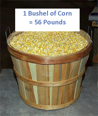 bushel-corn_sm
