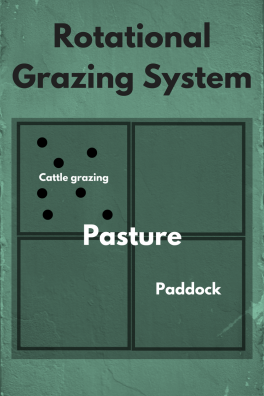 rotational-grazing-system