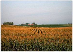 7 Things You Should Know about Farming and Agriculture