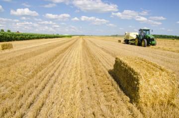 baling-straw-360x238