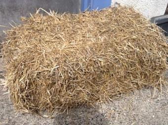 cc-straw-bale