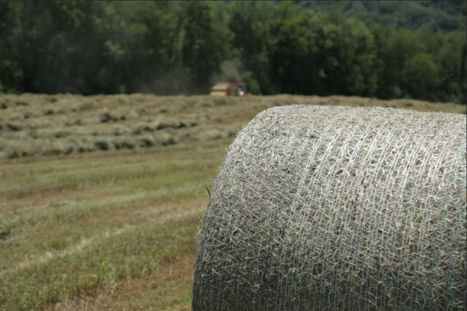 net wrapped bale - https://www.makinhay.com/would-you-like-netwrap-twine-or-plastic-with-your-bale/