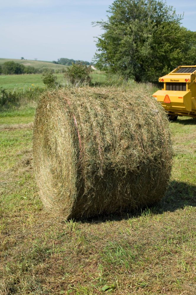 Why Do They Do That Wrapping Bales Iowa Agriculture Literacy - Bales