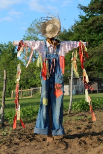 homemade scarecrow