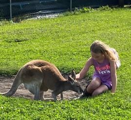 Kangaroo and Hailey